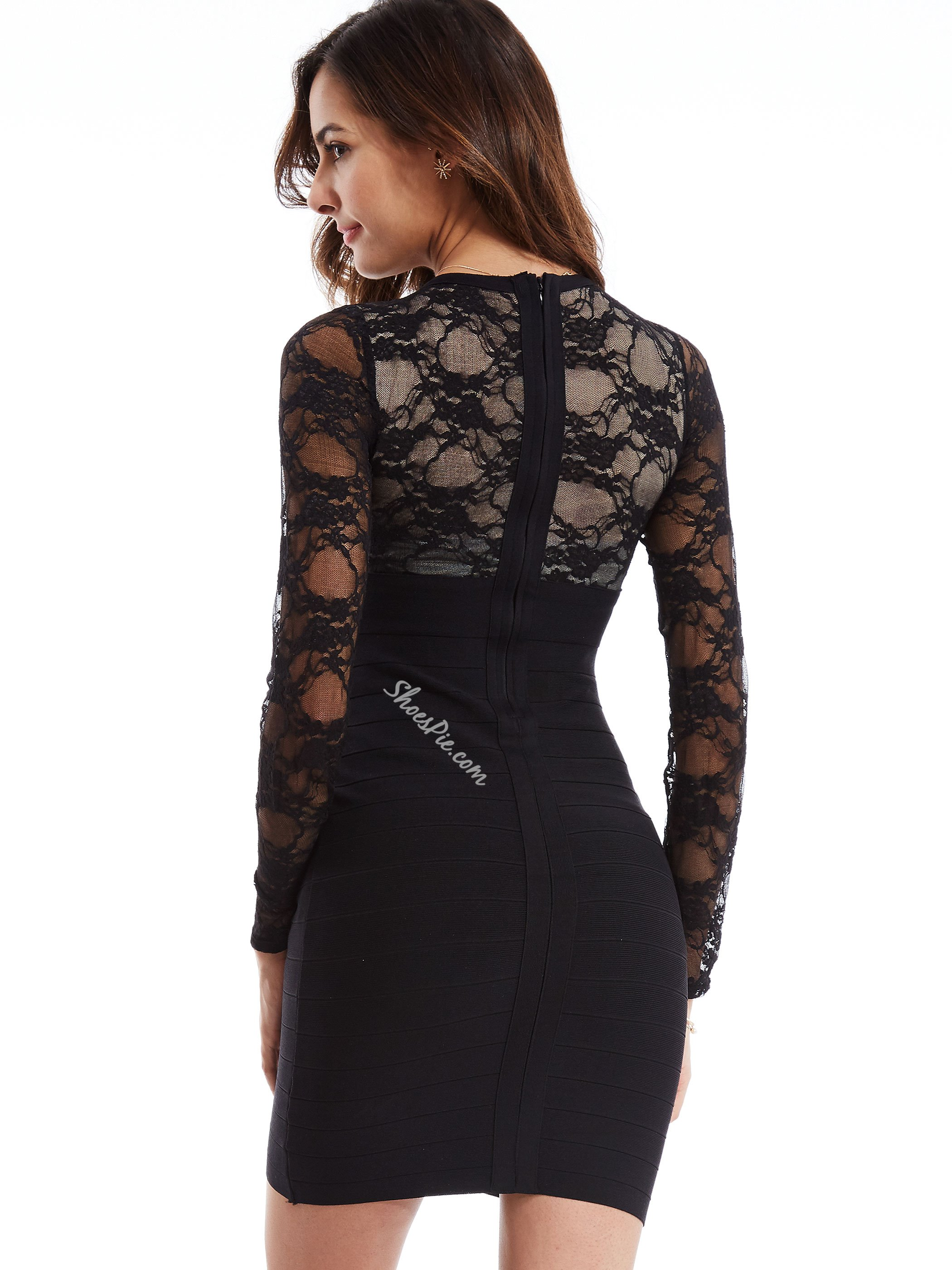 Plain Lace See-Through Sheath Dress