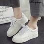 Shoespie White Ribbon Shoe Lace Sneakers