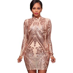 Shoespie Stand Collar See-Through Bodycon Dresses
