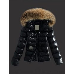 Slim Zipper Standard Women's Cotton Padded Jacket