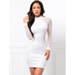 See-Through Stand Collar Long Sleeve Bodycon Dresses