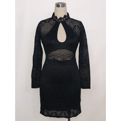 Stand Collar Hollow Lace Bodycon Dresses