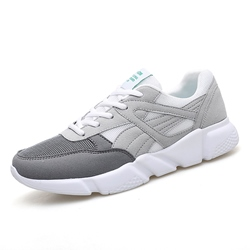 Spring Casual Lace-Up Mesh Men's Sneakers