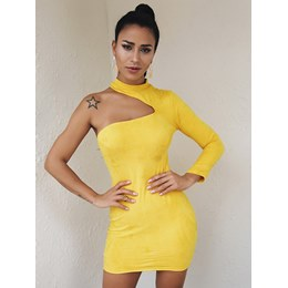 Shoespie Plain Sexy Fall Turtleneck Women's Bodycon Dress