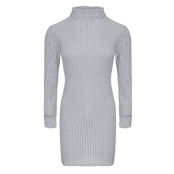 Long Sleeve Above Knee Turtleneck Casual Women's Dress