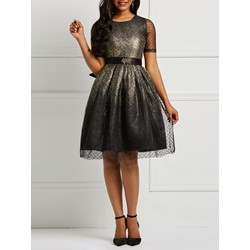 Mesh Elegant Fall Women's Skater Dress