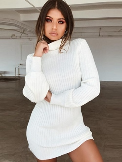 Polyester Turtleneck Plain Women's Bodycon Dress