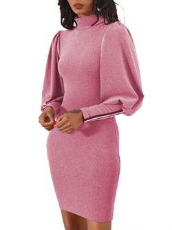 Long Sleeve Stand Collar Fall Women's Bodycon Dress
