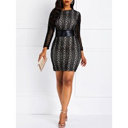 Long Sleeve Patchwork Lace Spring Women's Bodycon Dress