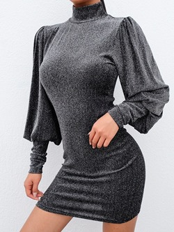 Above Knee Long Sleeve Turtleneck Women's Bodycon Dress