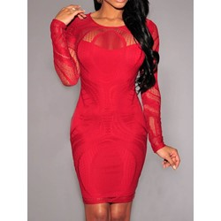 Long Sleeve Round Neck Mesh Pencil Women's Bodycon Dress
