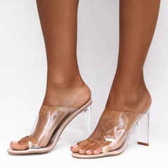 Shoespie Clear Jelly Chunky Heel Mules