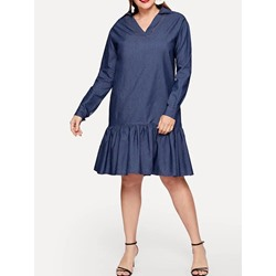Plus Size Long Sleeve Pleated V-Neck A-Line Women's Dress