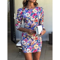 Print Round Neck Long Sleeve Bodycon Women's Dress