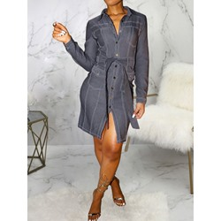 Casual Single-Breasted Long Sleeve Pocket Bodycon Women's Dress