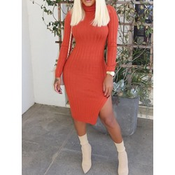 Orange Casual Turtleneck Split Knee-Length Women's Dress