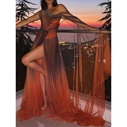 Sexy Split Mesh See-Though Floor-Length A-Line Women's Dress