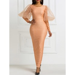 Elegant Lace Mesh Long Sleeve Round Neck Pencil Women's Dress