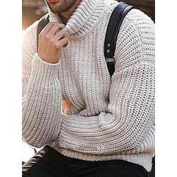 Plain Standard Turtleneck Casual Slim Sweater