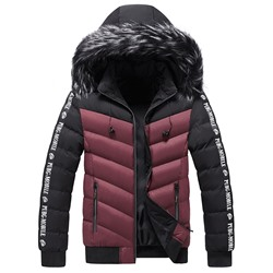 Color Block Standard Stand Collar European Zipper Down Jacket