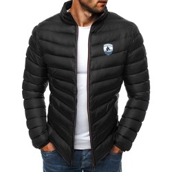 Standard Stand Collar Appliques Zipper Casual Down Jacket