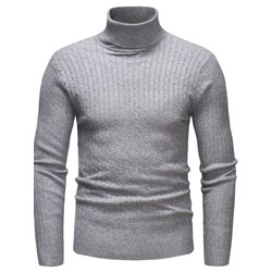Plain Turtleneck Standard Casual Fall Sweater