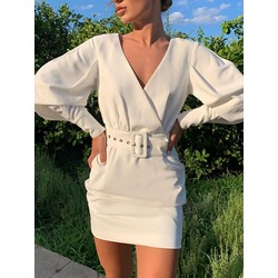 Above Knee Long Sleeve V-Neck Bodycon Women's Dress