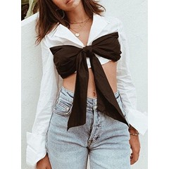 Lapel Bowknot Regular Long Sleeve Women's Blouse