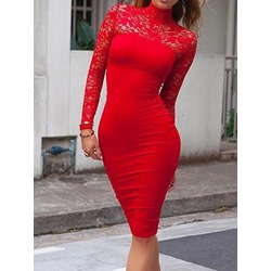 Long Sleeve Turtleneck Lace Bodycon Women's Dress