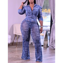 Shirt Casual Button Single-Breasted Women's Two Piece Sets