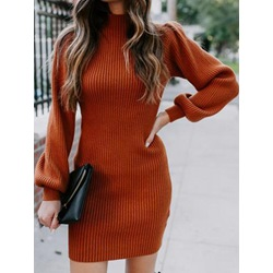 Long Sleeve Above Knee Stand Collar Pullover Women's Dress