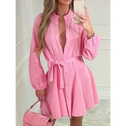 Stand Collar Long Sleeve Above Knee Single-Breasted Women's Dress
