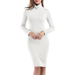 Turtleneck Knee-Length Long Sleeve Bodycon Dress