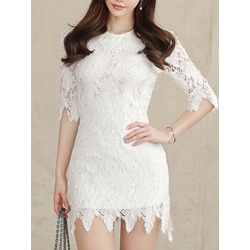 Shoespie Hollow Lace Round Neck Half Sleeve Bodycon Dress