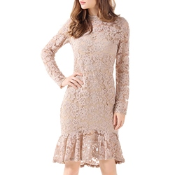 Shoespie Patchwork Lace Zipper Mermaid Plain Knee-Length Long Sleeve Bodycon Dress